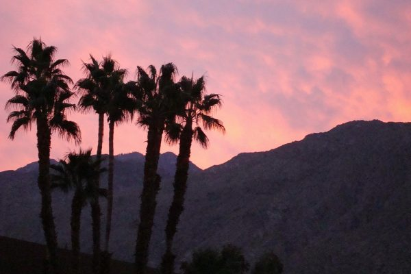 The best things to enjoy when you visit Palm Springs, CA
