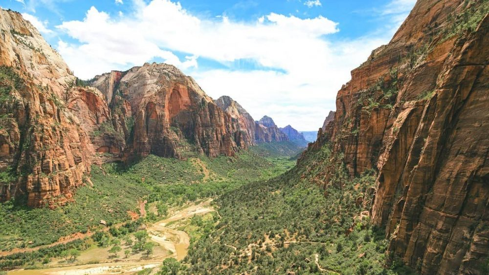 Green canyon and red cliffs during daytime in Zion National Park