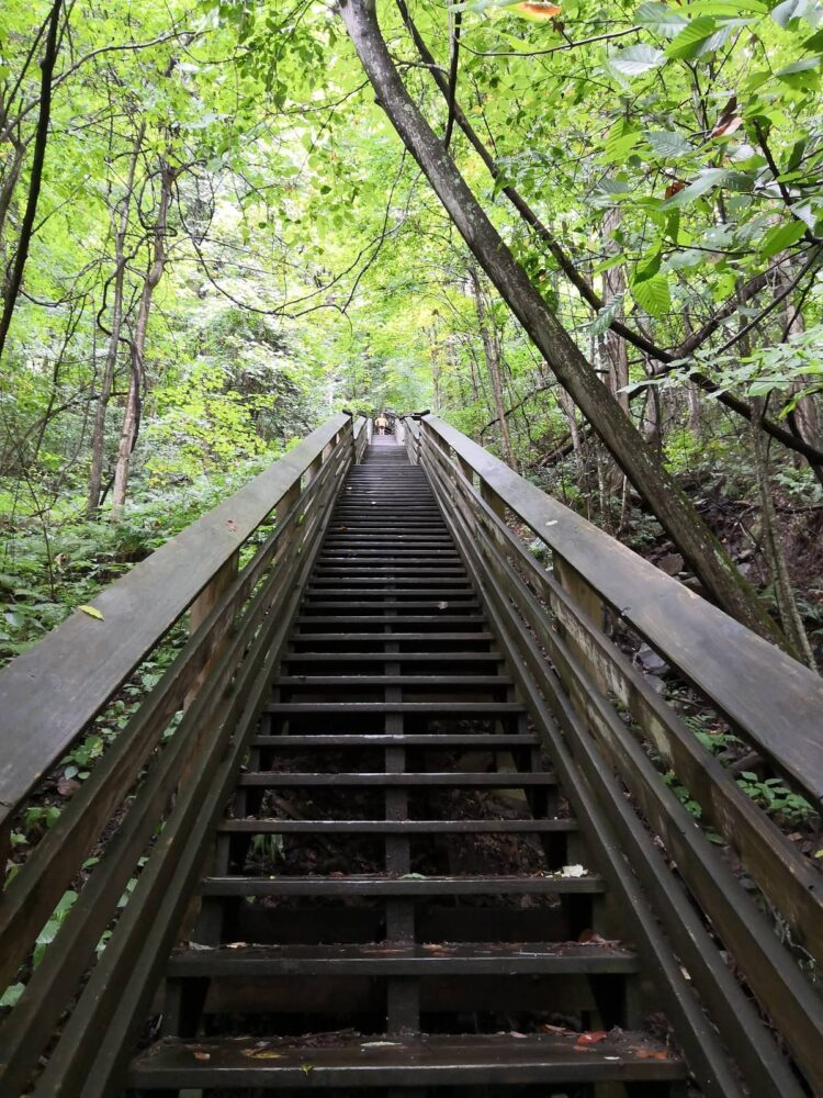 A lot of steps in New River Gorge