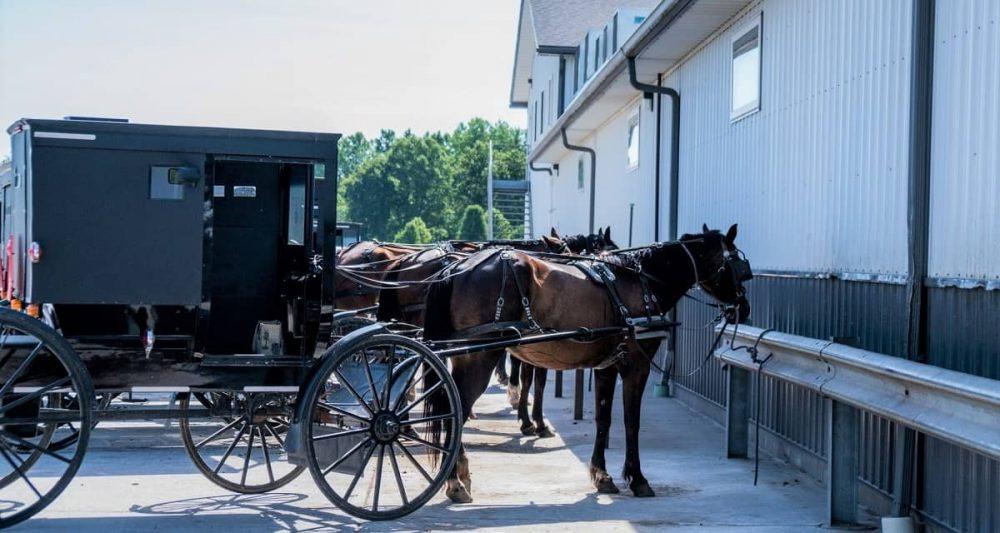Horse drawn wagons parked in Shipshewana