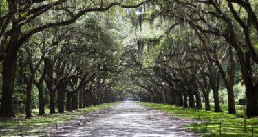 Visit Savannah, the first city of Georgia