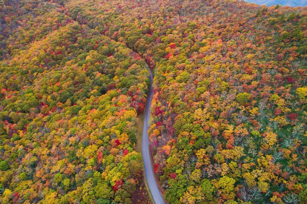 Blue Ridge Parkway road trip