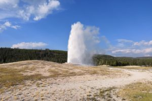 Five reasons to go to Yellowstone National Park, Wyoming