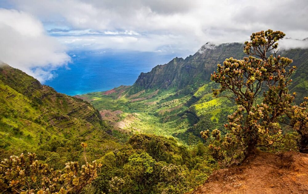 Kalalau Valley on Kauai