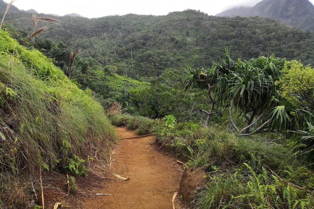 Red dirt on the Kalalau Trail