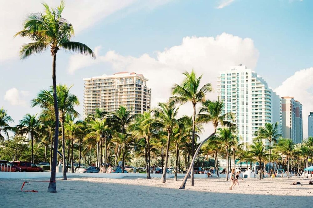Beach with palm trees and high rises as base for Everglades visit