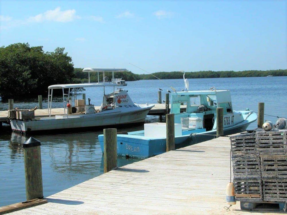 Dock, fishing boats and poles