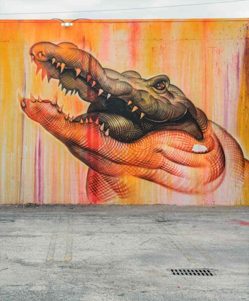 Alligator painted on wall