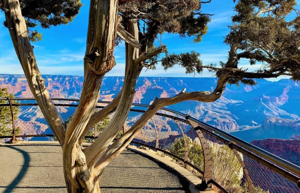 Grand Canyon South Rim overlook