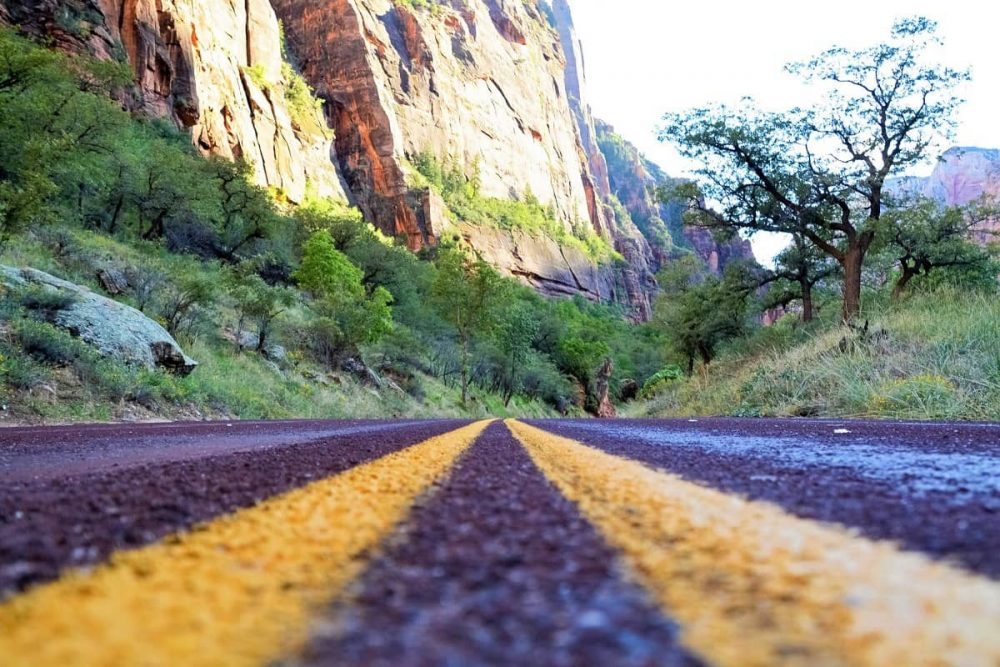 Road trip in Utah among red cliffs and green vegetation
