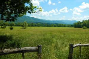 Where to stay near Great Smoky Mountains National Park