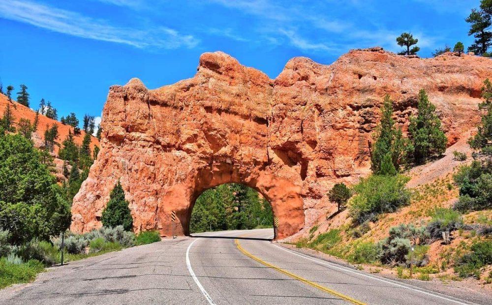 Road through red rock during daytime