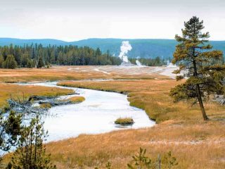 7 reasons to visit Yellowstone National Park, Wyoming