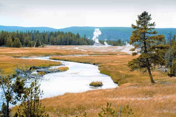 7 reasons to visit Yellowstone National Park, WY
