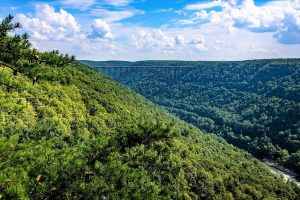 Where to stay near New River Gorge National Park, WV