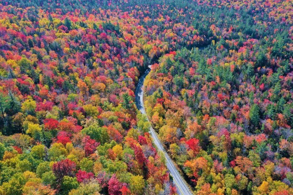 Fall folliage on New England road trip