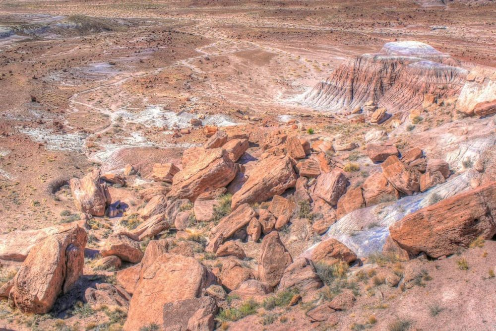 Red landscape in Petrified Forest in Arizona